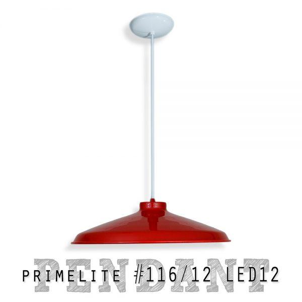 Pendant Light #116/12 LED12